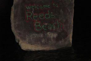 Reeds Tagging1